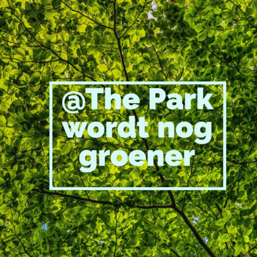 groene fitness milieubewuste zaak @The Park Boekenbergpark
