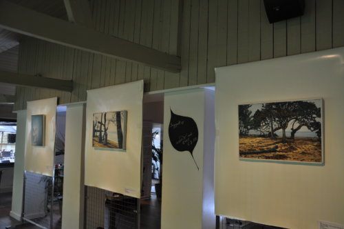 tentoonstelling @The Park Boekenbergpark